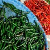 Chilies of different sizes and colors at the flower and vegetable market in Bangkok