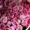 Roses are sold in bulk at Bangkok's biggest flower market