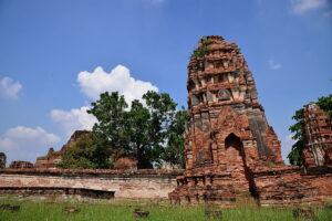 Wat Mahathat temple ruin in Ayutthaya
